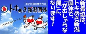トキめき新潟国体.JPG
