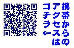 携帯アクセス.JPG